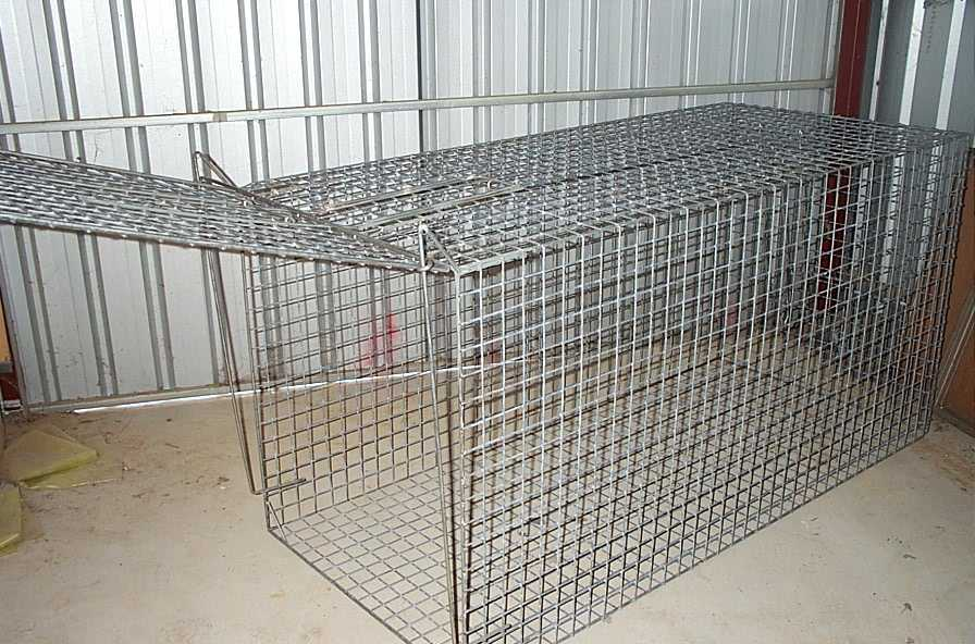 Fox/ dog trap